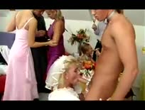 Wedding Party - Hardcore sex video