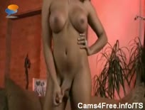 Shemale Hot Black Tranny Mimi Masturbates On Private We